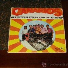 Discos de vinilo: CANARIOS SINGLE GET ON YOUR KNESS. Lote 218160435