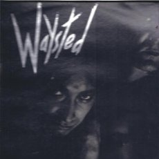 Discos de vinilo: WAYSTED THE GOD BAD WAYSTED. Lote 25367557