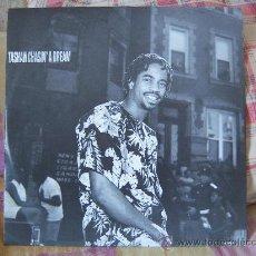 Discos de vinilo: (MX) TASHAN CHASIN´ A DREAM. Lote 28198224
