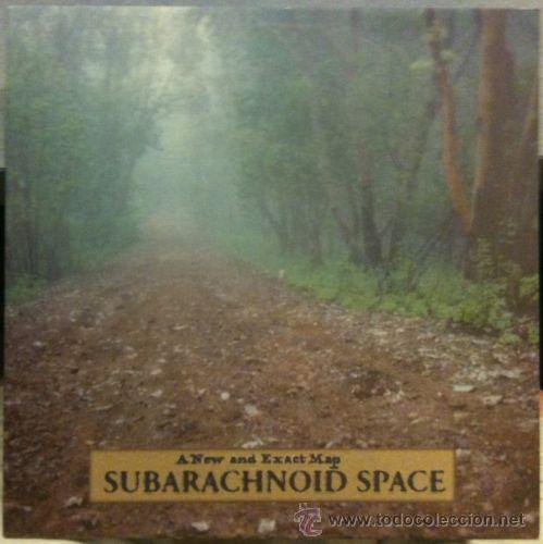 SUBARACHNOID SPACE. A NEW AND EXACT MAP (ORIG. SEPTEMBER GURLS RECORDS) PROG-PSYCH (Música - Discos - LP Vinilo - Pop - Rock Extranjero de los 90 a la actualidad)