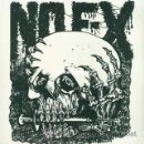 Discos de vinilo: LP NOFX MAXIMUM ROCKANDROLL VINILO PUNK HARDCORE. Lote 153678948