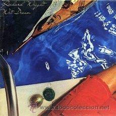Discos de vinilo: RICK WRIGHT - WET DREAM - PINK FLOYD - MUY BUSCADO EN VINILO - APENAS USADO. Lote 31737432