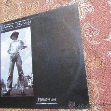 Discos de vinilo: LP DE VINILO DE SHAWN COLVIN- TITULO STEADY ON- ¡¡¡¡NUEVO A ESTRENAR¡¡¡¡ORIGINAL DEL 89. Lote 33205482
