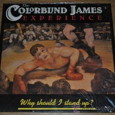 Discos de vinilo: THE COLORBLIND JAMES EXPERIENCE.WHY SHOULD I STAND UP?.(DRO 1990). Lote 33293916
