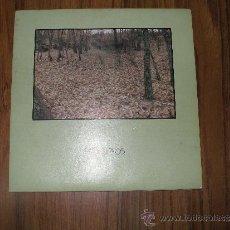 Discos de vinilo: PASAJEROS - GRITARÉ. Lote 35563644