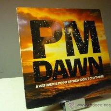 Discos de vinilo: PM DAWN A WATCHER'S POINT OF VIEW (DON'T CHA THINK) VINILO MAXI 12
