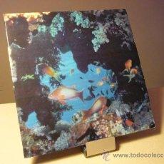 Discos de vinilo: CIUDAD JARDÍN ATÚN Y ALGAS LP . Lote 37483388