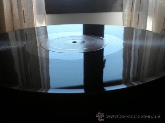 Discos de vinilo: CELI BEE & THE BUZZY BUNCH - MACHO- SUPER 45 MAXI - ORIGINAL ESPAÑA - EPIC 1978 - MUY NUEVO (5) - Foto 6 - 37667877