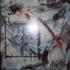 Discos de vinilo: AMOR FATI / VANDAL X : AGAINST NATURE ( LP, FLESH RDS, USA., 1986). Lote 39242125