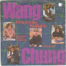 Discos de vinilo: WANG CHUNG, BANDA SONORA DE THE BEAKFAST CLUB: FIRE IN THE TWILIGHT, EDITADO POR AM RECORDS EN 1985. Lote 40399950