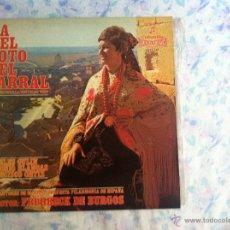 Discos de vinilo: LP LA DEL SOTO DEL PARRAL. Lote 40631812