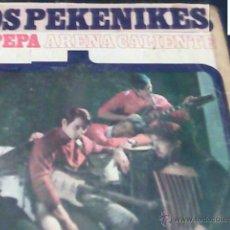 Discos de vinilo: GRUPO LOS PEQUENIQUES 1966 LADY PEPA ARENA CALIENTE. Lote 42756372