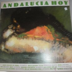Discos de vinilo: MAGNIFICO LP DE - ANDALUCIA HOY -. Lote 42950570