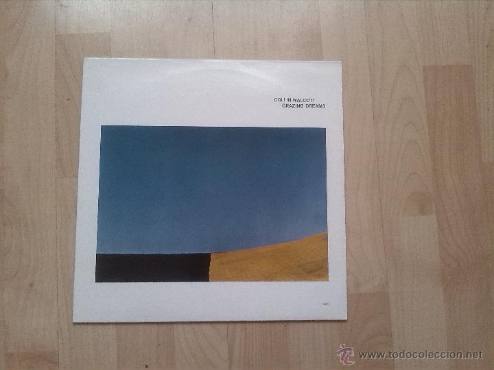 COLLIN WALCOTT - GRAZING DREAMS (Música - Discos - LP Vinilo - Electrónica, Avantgarde y Experimental)