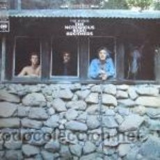 Discos de vinilo: THE NOTORIOUS BYRDS BROTHERS. Lote 44754698