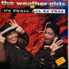 Discos de vinilo: THE WEATHER GIRLS. WE SHALL ALL BE FREE.. Lote 46605559