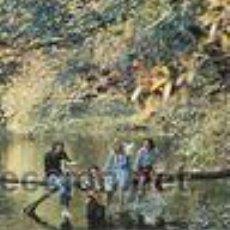 Discos de vinilo: WINGS WILD , EMI ODEON, J 062-04946. Lote 46836679
