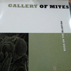 Discos de vinilo: GALLERY OF MITES BUGS ON THE BLUEFISH LP INSERTO. Lote 46870480