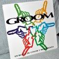 Discos de vinilo: GROOM - LP 12' Con inserto - EN BUSCA DE COLOR Y MOVIMIENTO - Editado ESPAÑA - 11 TRACK - ARTFA 1992. Lote 47046285