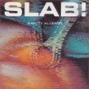 Discos de vinilo: LP - SLAB! – SANITY ALLERGY - ROCK INDUSTRIAL. Lote 47825089