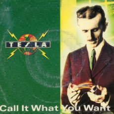 Dischi in vinile: TESLA, SG, CALL IT WHAT YOU WANT + 1, AÑO 1991. Lote 49417019