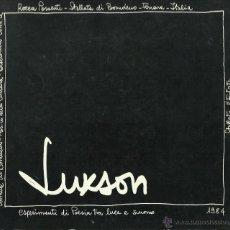Discos de vinil: LUXSON. ESPERIMENTI DI POESIA TRA LUCE E SUONO. SERGIO ALTAFINI (ED.). BOOK + EP (1985). Lote 52278931