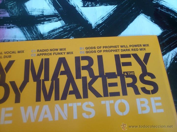 Discos de vinilo: ZIGGY MARLEY & THE MELODY MAKERS - EVERYONE WANTS TO BE - DOBLE MAXI SINGLE - VINILO - PROMO-ELEKTRA - Foto 4 - 53072579