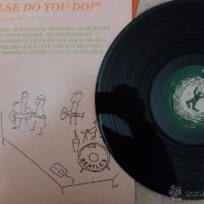 Discos de vinilo: WHAT ELSE DO YOU DO? - A COMPILATION OF QUIET MUSIC / ALTERNATIVE - IMPROVISATION - ART ROCK. Lote 53369526