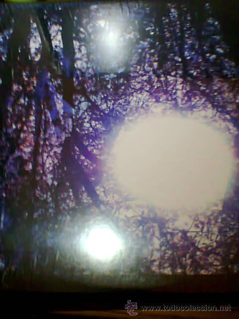 SIX ORGANS OF ADMITTANCE-LUMINOUS NIGHT (Música - Discos - LP Vinilo - Rock & Roll)