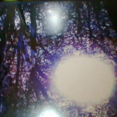 Discos de vinilo: SIX ORGANS OF ADMITTANCE-LUMINOUS NIGHT. Lote 54181043