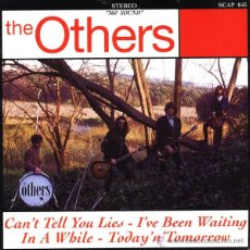 Discos de vinilo: THE OTHERS - CAN'T TELL YOU LIES. Lote 54313623