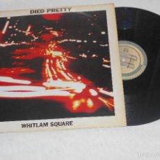 Discos de vinilo: DIED PRETTY WHITLAM SQUARE MAXI IMPORTACION UK. Lote 55818725