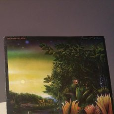 Dischi in vinile: FLEETWOOD MAC TANGO IN THE NIGHT LP . Lote 58877726