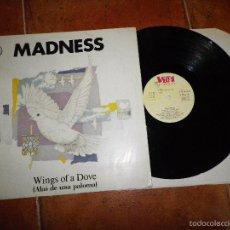 Discos de vinilo: MADNESS WINGS OF A DOVE (ALAS DE UNA PALOMA) MAXI SINGLE VINILO HECHO EN ESPAÑA BEHIND THE 8TH BALL. Lote 59070603