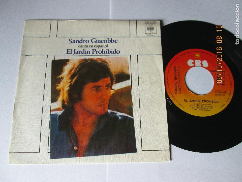 SANDRO GIACOBBE - EL JARDIN PROHIBIDO + SEÑORA MIA - EN ESPAÑOL - SINGLE - CBS 1976 SPAIN (Música - Discos - Singles Vinilo - Canción Francesa e Italiana)