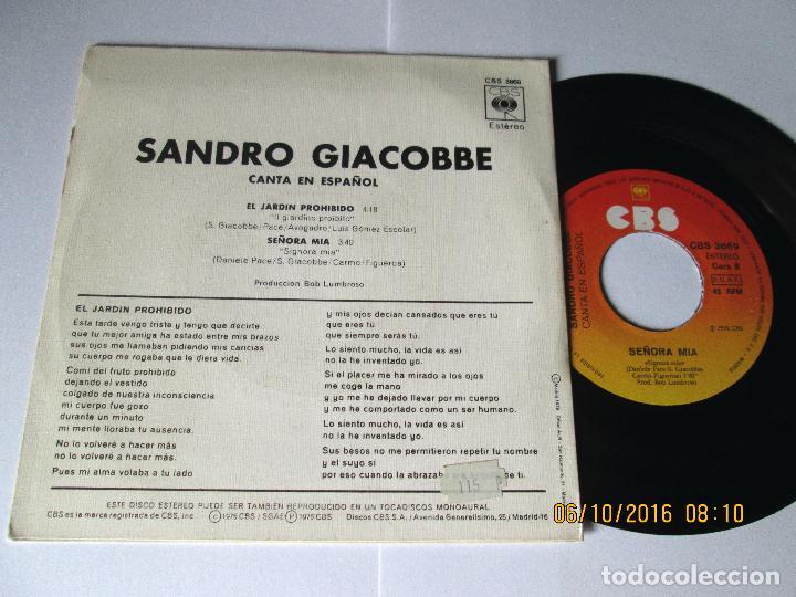 Discos de vinilo: SANDRO GIACOBBE - EL JARDIN PROHIBIDO + SEÑORA MIA - EN ESPAÑOL - SINGLE - CBS 1976 SPAIN - Foto 2 - 122980310