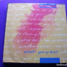 Discos de vinilo: XPANSIONS WHAT YOURE WANT MAXI UK 1991 PDELUXE. Lote 62402928
