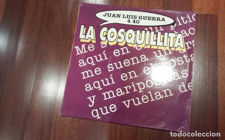 JUAN LUIS GUERRA-LA COSQUILLITA,OPROBIO.MAXI (Música - Discos de Vinilo - Maxi Singles - Grupos y Solistas de latinoamérica)