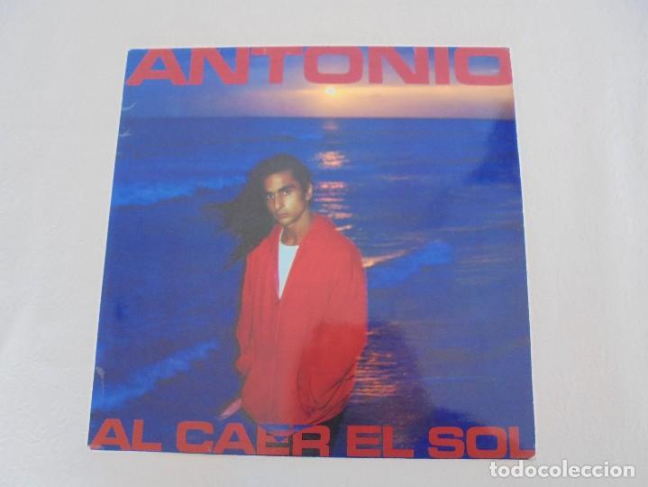 Discos de vinilo: ANTONIO FLORES. AL CAER EL SOL. EPIC 1981. VER FOTOGRAFIAS ADJUNTAS. - Foto 2 - 69513585