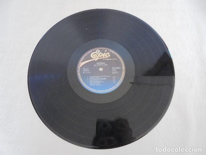 Discos de vinilo: ANTONIO FLORES. AL CAER EL SOL. EPIC 1981. VER FOTOGRAFIAS ADJUNTAS. - Foto 6 - 69513585