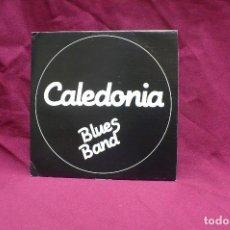 Discos de vinilo: CALEDONIA BLUES BAND, BORN UNDER A BAD SIGN, DOMINO BLUES, DEL 1991, CAMBAYA RECORDS.. Lote 74992771