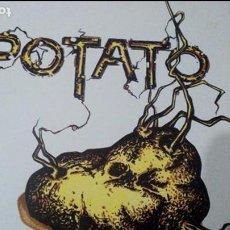 Discos de vinilo: POTATO TIJUANA IN BLUE LP CON INSERTO. Lote 75157263