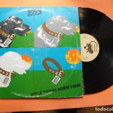 Discos de vinilo: STRAY DOG WHILE YOURE DOWN THERE LP SPAIN 1974 PDELUXE. Lote 75412663