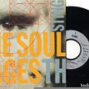 Discos de vinilo: SINGLE STING -THE SOUL CAGES - A&M RECORDS 1991. Lote 75717931