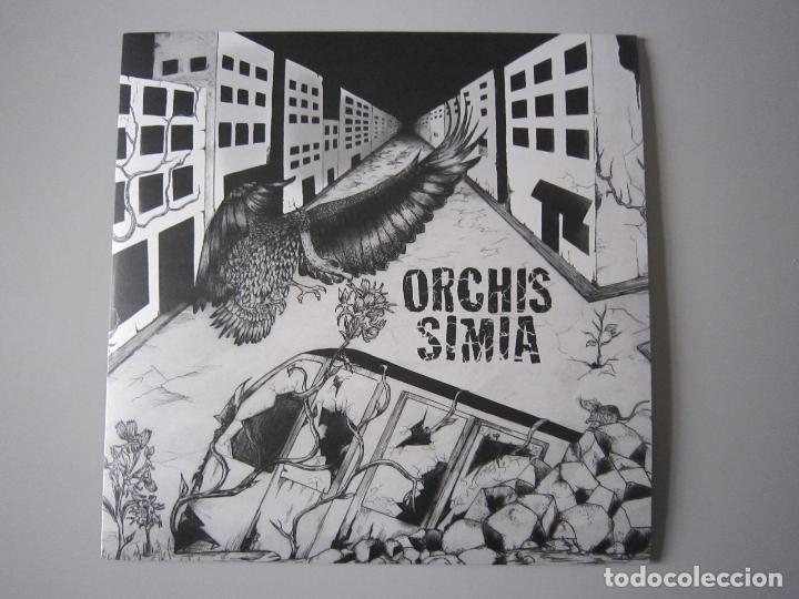 LP + CD - H.C. / CRUST - ORCHIS SIMIA - 2016 (Música - Discos - LP Vinilo - Punk - Hard Core)