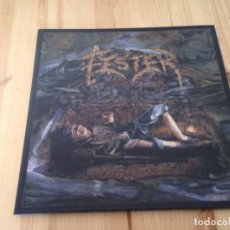 Discos de vinilo: FESTER-A CELEBRATION OF DEATH -LP DEATH METAL. Lote 76868971
