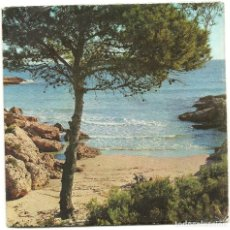 Discos de vinilo: TETE MONTOLIU TRIO. CALAFAT (ON THE GREEN DOLPHIN STREET....) (VINILO EP 1966). Lote 78156149
