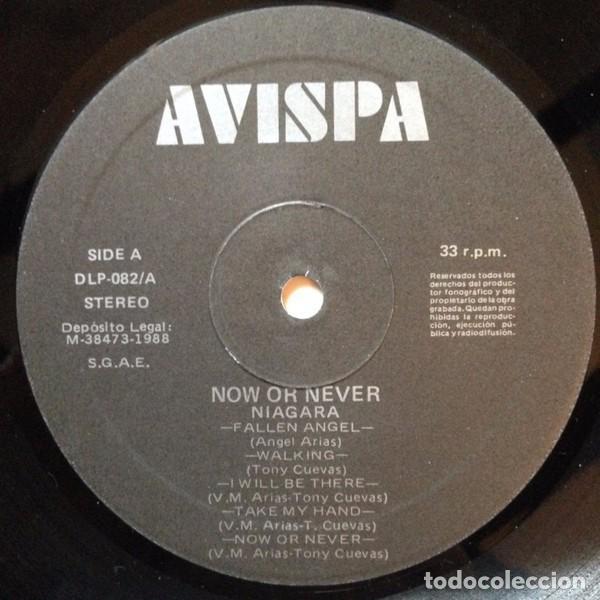 Discos de vinilo: NIAGARA - NOW OR NEVER - LP VINYL 1988 AVISPA - Como nuevo - NM - (Sangre Azul) - Foto 3 - 84280076