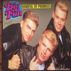 Discos de vinilo: BIG FUN - HANDFUL OF PROMISES . 1990 JIVE . Lote 85043544