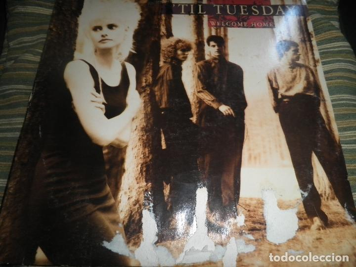 TIL TUESDAY -WELCOME HOME LP - ORIGINAL U.S.A. - EPIC 1986 CON FUNDA INT. ORIGINAL - (Música - Discos - LP Vinilo - Pop - Rock - New Wave Extranjero de los 80)
